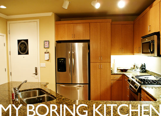 my boring kitchen on www.ohbrooke.com